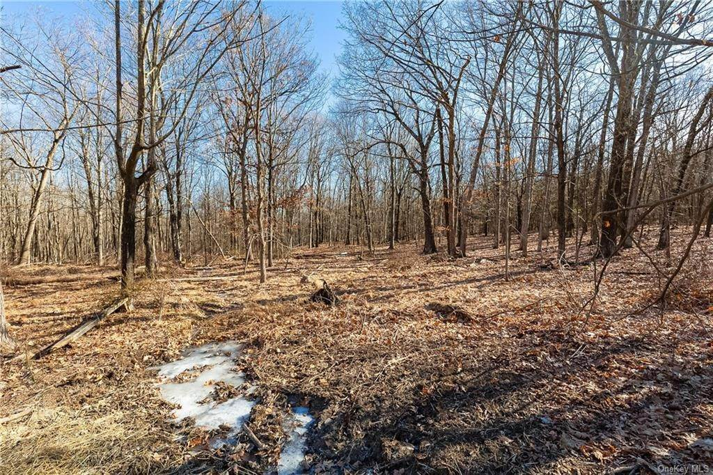 Residential for Sale at 553 Fitzsimmons Road, Milan, NY 12571 Milan, New York 12571 United States