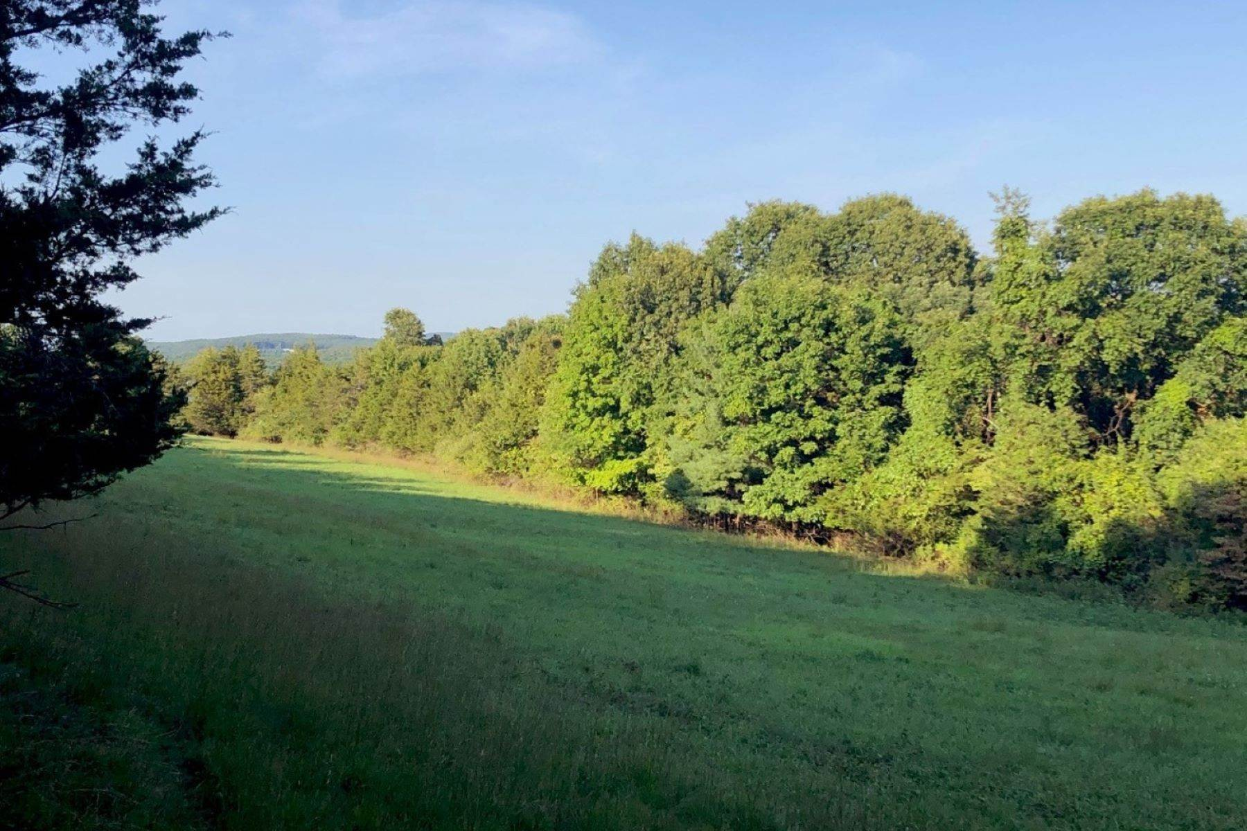 Land for Sale at Dream Building Site Fitzsimmons Rd Milan, New York 12571 United States